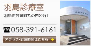 羽島診療室 羽島市竹鼻町丸の内3-51 058-391-6161 アクセス・診療時間はこちら